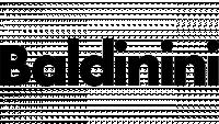 Baldinini изображение